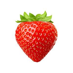 Erdbeere: Elan