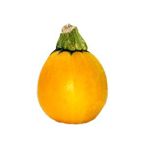 Zucchini: One Ball