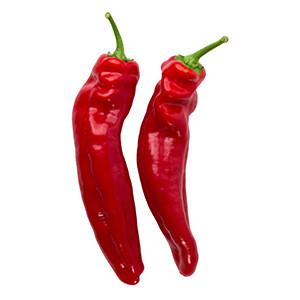 Paprika: Roter Augsburger